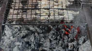 Closeup shashlik fresh meat bake grid fireplace ember smoke heat — Stock Video