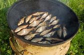 Ekologiczne ryb dym dym domu zardzewiały baryłkę — Zdjęcie stockowe