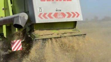 步行特写联合收割机收割小麦农业领域 — 图库视频影像