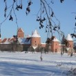 Active tourist recreate Trakai castle snow frozen lake tree twig — Stock Video