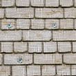 White brick wall metal wire net attached renovate  — Stock Photo