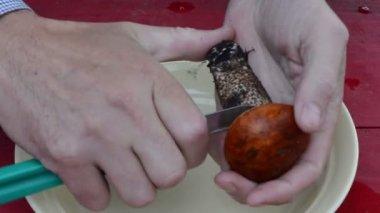 手清洁木制桌上的橙色帽蘑菇刀 — 图库视频影像