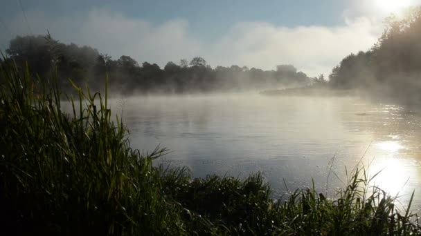 Niebla de agua río amanecer — Vídeo de stock