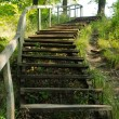 Old wooden stairs in the park - Stock Photo
