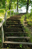 Old wooden stairs in the park — Stock Photo