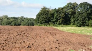 Panorama fresh plough agricultural field — Stock Video