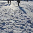 Stock Video: Recreate park woman sliding frozen ice evening shadows