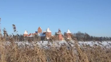 Trakai castle snow frozen lake reeds wind recreate winter — Stock Video