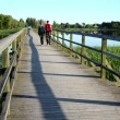 Stock Video: Couple walk hand in hand on wooden bridge through lake