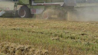 Kombinieren sie maschine ernte landwirtschaft weizenfeld — Stockvideo