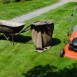Mower and wheelbarrow to throw the grass  — Stock Photo
