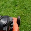 Stock Video: Walk move cut grass lawn mower cutter garden meadow