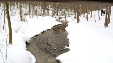 Winter park stream brook creek flow walk path — Vídeo Stock