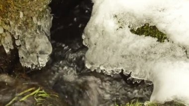 Closeup creek stream flow stone mossy grass snow icicles spring — Stock Video