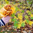 Hand hold decorative flower color autumn tree leaf — Stock Photo #23358674