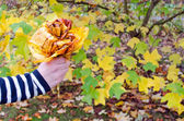 Hand hold decorative flower color autumn tree leaf — Stock Photo