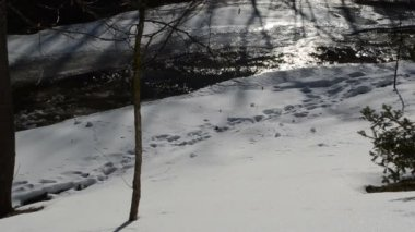 Frozen snow pieces roll hill sun reflect river water downhill — Stock Video