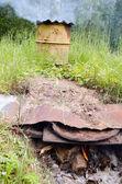 Dymu wędzarni zardzewiały baryłkę drewno kominkowe spalania — Zdjęcie stockowe