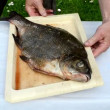 Bream fish prepared for bake in fire bonfire ember cinder foil — Stock Video