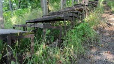 Girare la donna vista in flip-flop scarpe cammino giù per le scale in legno retrò — Video Stock