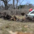 Rake tool level molehill soil spring garden meadow woman working — Stock Video
