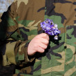 Soldier camouflage hand violet flowers girlfriend - Stock Photo