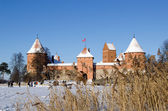 Recreate Trakai fort snow frozen lake reeds — Stock Photo
