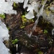 Clear water flow ice - Stock Photo