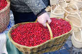 Hand farmer wick basket mossberry market ecologic — Stockfoto
