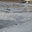 Stock Video: Breakaway frozen pieces of ice along the coast goes