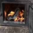 Firewood burn fire stove — Stock Video #25887545