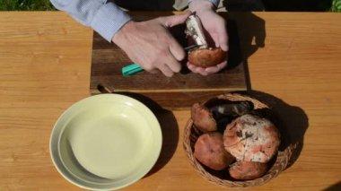 Hand knife clean mushroom — Stock Video