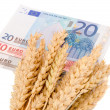 Wheat ripe harvest ears euro banknotes isolated — Stock Photo