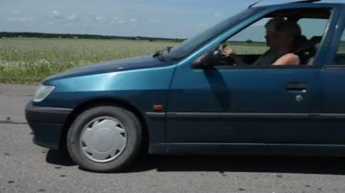 Dead fox road car drive — Stockvideo