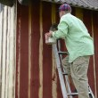 Stock Video: Worker ladder paint wall