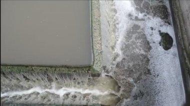 Water flow sedimentation — Stock Video