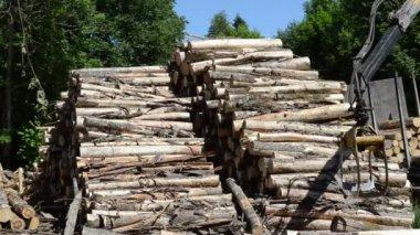 Loader crane forestry log — Stock Video