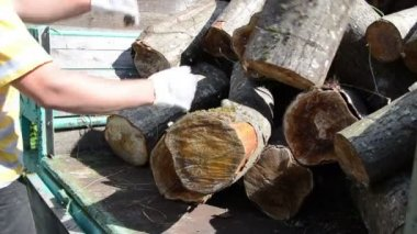 Trailer log load worker — Stock Video