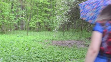 Woman umbrella garden — Stockvideo