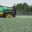 Stock Video: Spray crop