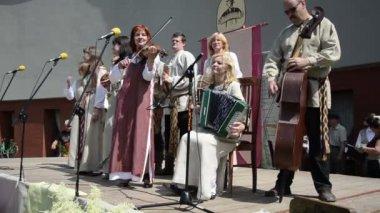 Rural folk ensemble — Stock Video