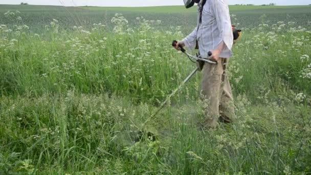 Hierba mojada trabajador mow — Vídeo de stock