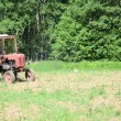 Stock Video: Tractor sow field bird