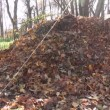 Compost leaves heaps — Stock Video