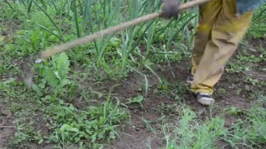 Garden weeding — Stock Video