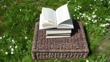 Books basket thumb page — Stock Video