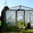 Girl water greenhouse — Vídeo de stock