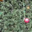 Stock Video: Treetop star decoration