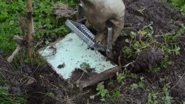Garden worker mole trap — ストックビデオ