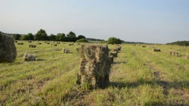 Woman stack hay bale — Stockvideo